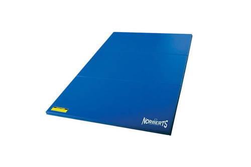 Gym Mat Standard 4' x 6'